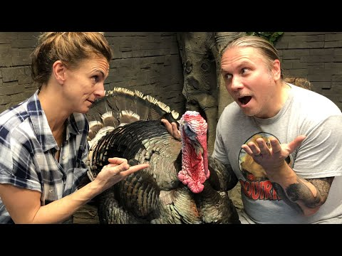 Xxx Mp4 DID I REALLY GET A PET TURKEY FOR THE REPTILE ZOO BRIAN BARCZYK 3gp Sex
