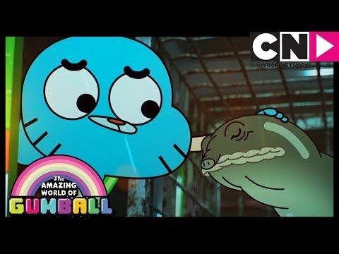 Xxx Mp4 Gumball The Watterson S Evil Turtle Cartoon Network 3gp Sex