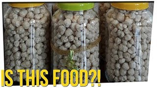 Brazil Wants to Feed the Poor with Mystery Pellets ft. Gina Darling & DavidSoComedy