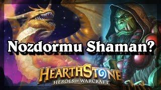 Hearthstone -  Nozdormu Shaman?