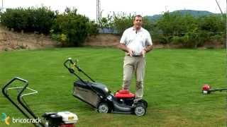 Segar y escarificar el césped con máquinas de gasolina (Bricocrack)