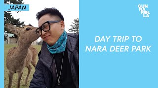 Visiting Nara Park: The Land Of Deer