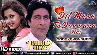Dil Mere Tu Deewana Hai   Sooryavansham   Amitabh & Rachana Banerjee   90's Romantic Bollywood Song