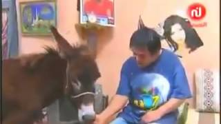 الفاهم و ببوشة و سيكو سيكو ( 8 دقائق من الضحك المتواصل )