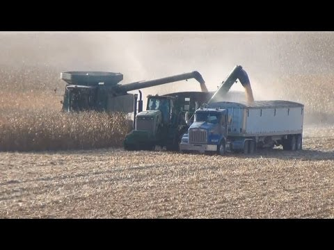 JLC HFI Harvest 2011 Got My Country On