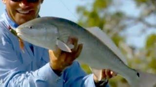 "Saltwater Experience: ""Redfish Frenzy"" Season 3   Episode 9"