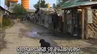 Stolen Kosovo (ro) - Uloupene Kosovo - Kosovo furat