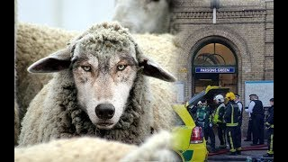 Parsons Green Attacker: Known Wolf?