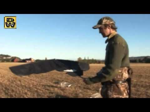 caza de gansos