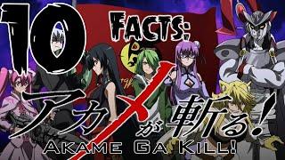 Top 10 Facts - Akame Ga Kill!
