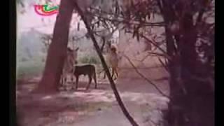 Kahe Ke Ta Sab Koi Apan(The Best Bhojpuri songs)