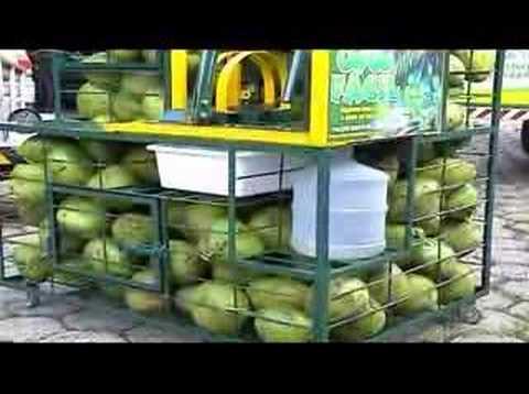 COCO FÁCIL Máquina para Extrair Água do Coco verde