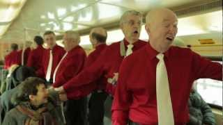 Tim Horton's singers return with  'Heart of My Heart'