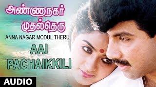 Aai Pachaikkili Full Song | Anna Nagar Modul Theru | Satyaraj,Ambika | Chandra Bose |Tamil Old Songs