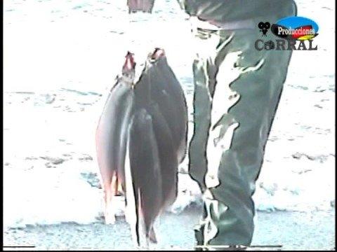 La Pesca del Lenguado en Playa Perales 2004