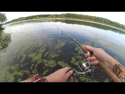 рыбалка на маленьком лесном озере