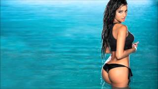 New Electro & House 2013 Dance Mix #67
