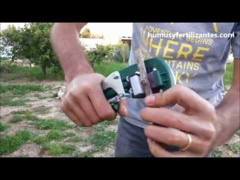 Injertar VIÑA con la Máquina de Injertar 3 Tipos de Injertos