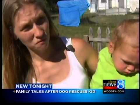 Mom: Dog saved baby son from drowning
