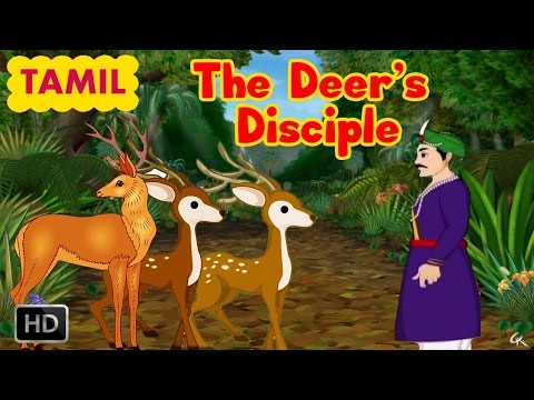 Jataka Tales - The Deer's Disciple - Tamil Short Stories For Kids - Kids Stories