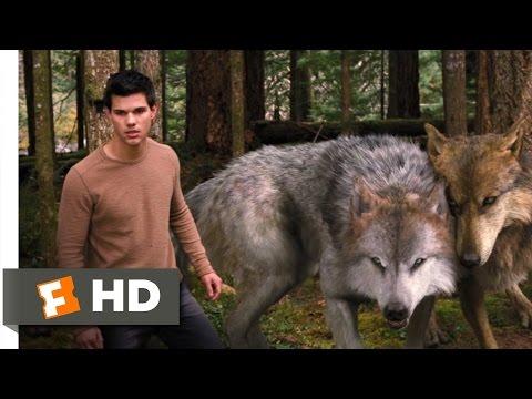 Xxx Mp4 Twilight Breaking Dawn Part 2 3 10 Movie CLIP A Wolf Thing 2012 HD 3gp Sex