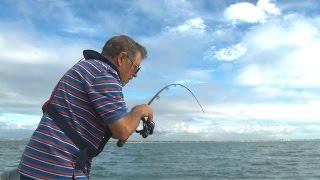 Light tackle fishing + Workshop VLOG 5