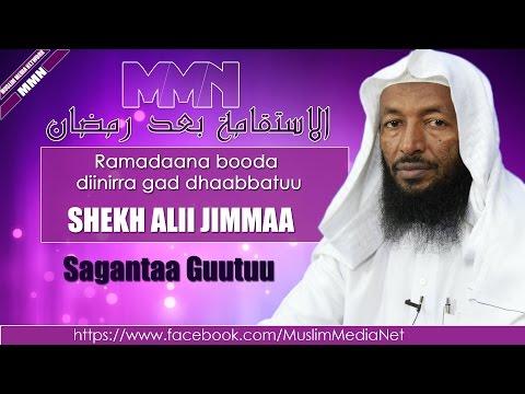 Xxx Mp4 Shekh Ali Jimma Sabaata Oromo Dawa 3gp Sex