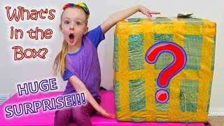 What's in the Box?!?! HUGE Surprise! For Trinity and Madison