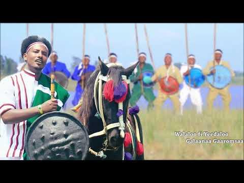 Xxx Mp4 Galaanaa Gaaromsaa DUBBII CHAARTARAA NEW 2018 Oromo Music 3gp Sex