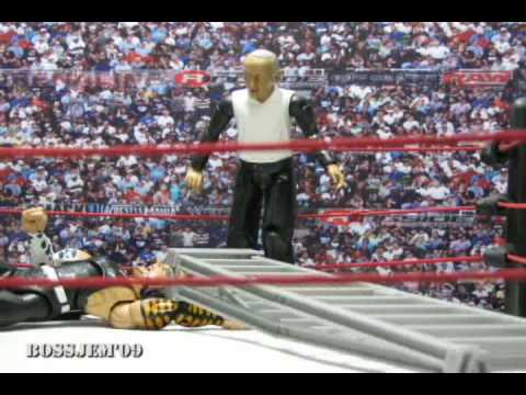 WWE Toys in Motion WTM Jeff hardy vs Matt hardy TLC Falls Count Anywhere Match
