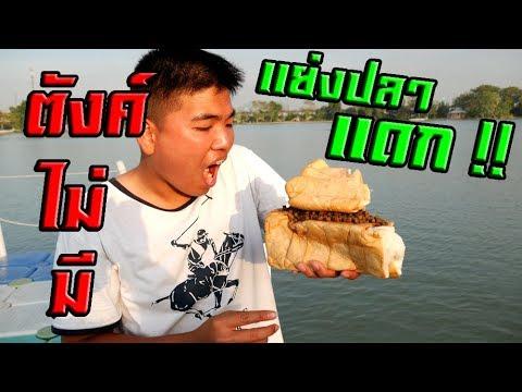 Xxx Mp4 กินอาหารปลายังไง ให้ปลามีความสุข 3gp Sex