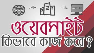 What is website and how website works animation- ওয়েবসাইট কিভাবে কাজ করে? Bangla Explainer by WaliBD