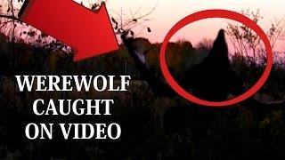 REAL Werewolf Filmed By 2 Women Joggers | Werewolf / Dogman recorded on video camera 2016