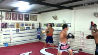 boxing training Mohamad Bahrami Dt & Sunny