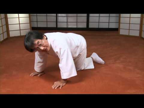 Ohashi Method® Exercises for Lower Back Pain - Crawling
