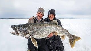 Huge Lake Trout!