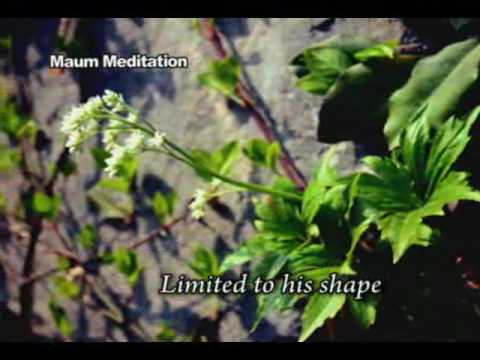 Intro to Maum Meditation