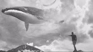 آهنگ ترسناک بازی نهنگ آبی - روز #12