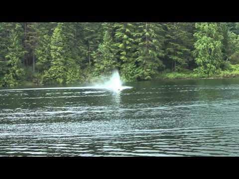 Xxx Mp4 Aeromarine 45 Quot Outer Limits XXX Mono 12s Lipo RC Boat Vs Traxxas Spartan 6s Lipo RC Boat 3gp Sex