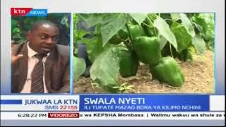Kuna umuhimu wa kuwa na makatibu watano katika wizara ya kilimo? | Suala Nyeti