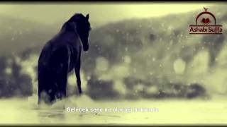 Şeyh Nebil el-Avadi-Üzülme