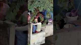 Holi fight in delhi on 13 -03-2017