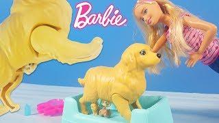 Barbie Yeni Doğum Yapan Köpek   Yeni Barbie Oyuncak Videoları   Evcilik TV