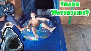 SHARK INSIDE A WATERSLIDE?