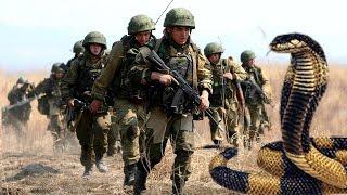 الشيخ كشك - قصة الثعابين التي واجهت الجيش الروسي في افغانستان وحاربت مع المسلمين