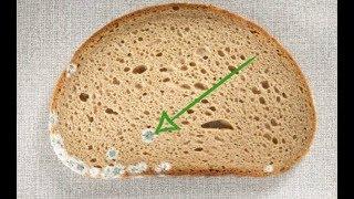 خطأ شائع نرتكبه جميعنا... لهذا السبب إحذروا إزالة الأجزاء المتعفنة من الخبز!