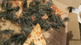 Special Delivery!! Pizza Roach PRANK!!