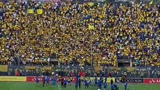 Sundowns Fans Celebrate After Winning The League Title For The 8th Time