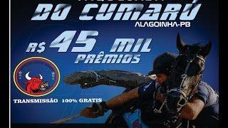 PORTAL GADO BRAVO - VAQUEJADA 100% GRÁTIS (AO VIVO)