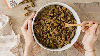 Top 10 Dog Foods for HEALTH: What is the Best Dog Food Brand?